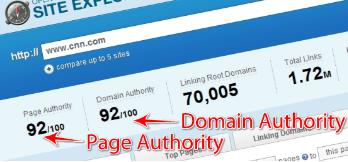 Page Authority Domain Authority for seo